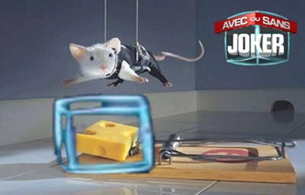 La petite souris prends tous les risques pour vous rapporter des infos !