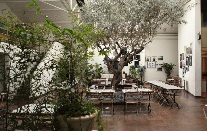studio de l'olivier