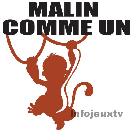 Casting Malin
